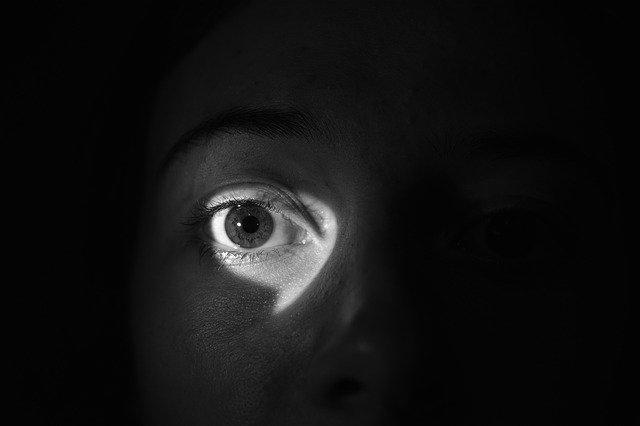 暗闇に映る目
