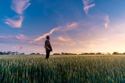 草原の上で、空に浮かぶ夕焼けを男性が眺めている
