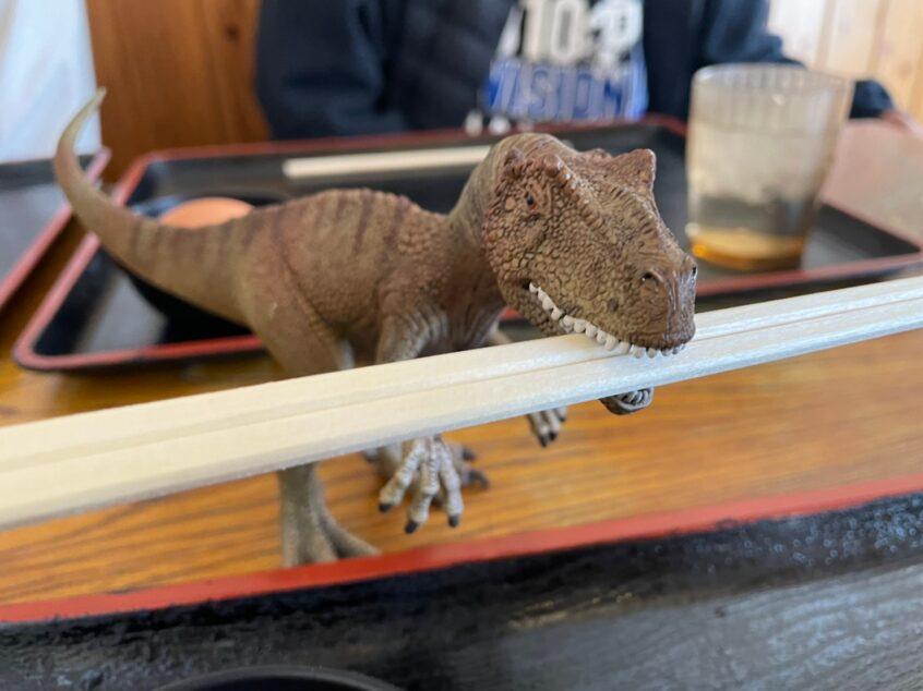 恐竜が箸をくわえてるところ